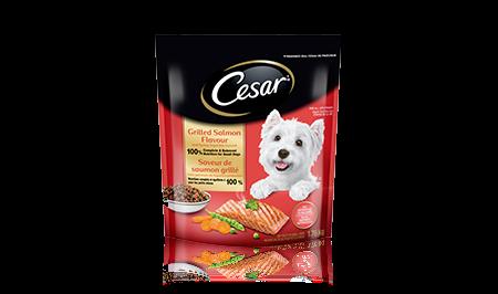 Nourriture sèche CESAR MD saveur de saumon grillé avec garniture de légumes printaniers