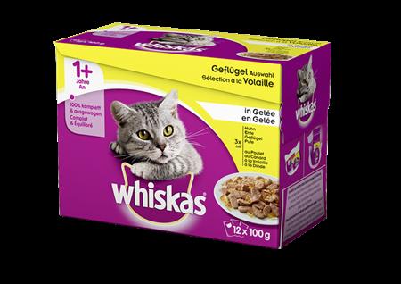 Whiskas 1+ Geflügel Auswahl in Gelée