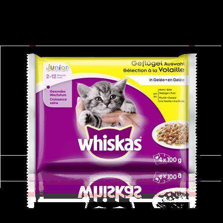 Whiskas Geflügel Auswahl in Gelée Junior