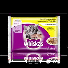 Whiskas® Geflügel Auswahl in Gelée Junior