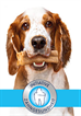 """Pedigree® """"Initiative Zahngesundheit"""" klärt auf und hilft"""