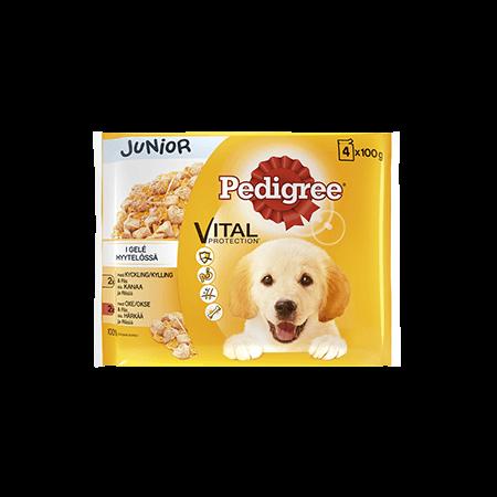 Pedigree<sup>®</sup> Junior kylling & oksekød i gelé 4x100g