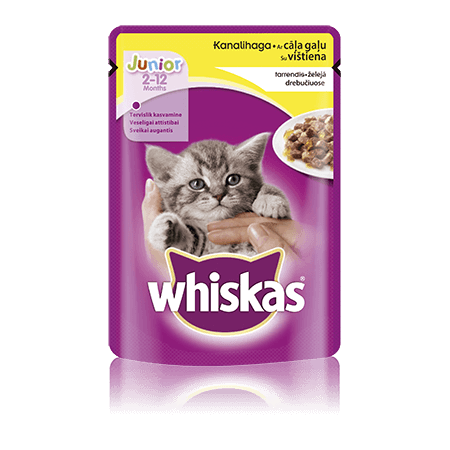 Whiskas Junior kiisueine kanalihaga