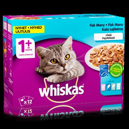 Whiskas® 1+ Kalalajitelma Hyytelössä 12x100g