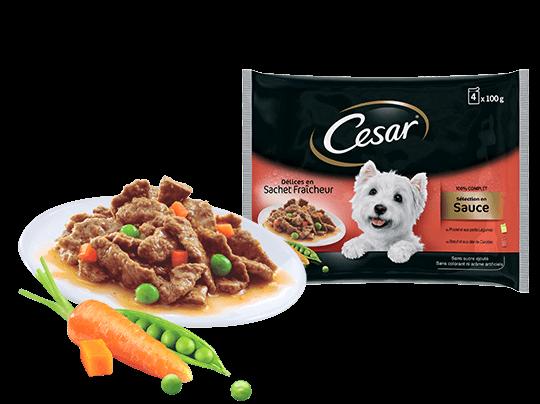 CESAR%c2%ae+D%c3%a9lices+en+sachets+fra%c3%aecheur+en+sauce+2+vari%c3%a9t%c3%a9s+4x100g