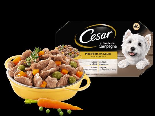 CESAR%c2%ae+%c3%80+la+carte+Barquettes+en+sauce+4+vari%c3%a9t%c3%a9s+4x150g