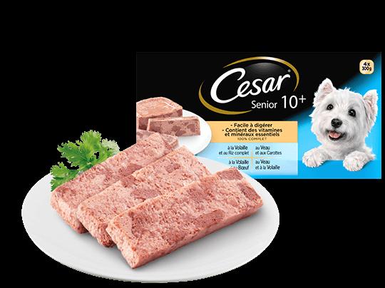 CESAR%c2%ae+Senior+10%2b+Barquettes+en+terrine+4+vari%c3%a9t%c3%a9s+4x300g