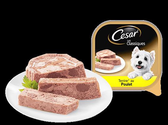 CESAR%c2%ae+au+poulet+Barquettes+en+terrine+Portion+individuelle+300g