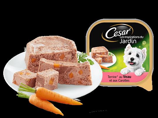 CESAR%c2%ae+au+veau+et+carottes+Barquettes+en+terrine+Portion+individuelle+300g