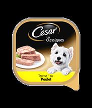 CESAR® au poulet Barquettes en terrine Portion individuelle 300g