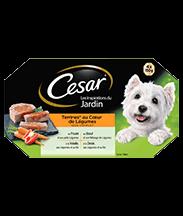 CESAR® Cœur de Légumes Barquettes en terrine et gelée 4 variétés 4x150g