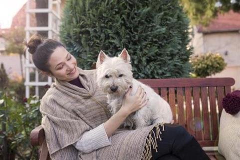 Comment montrer à son chien l'amour que l'on a pour lui ?