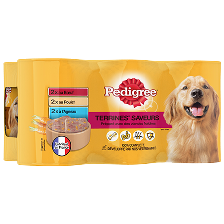 Boîtes Terrines™ 6x410g pour chien adulte
