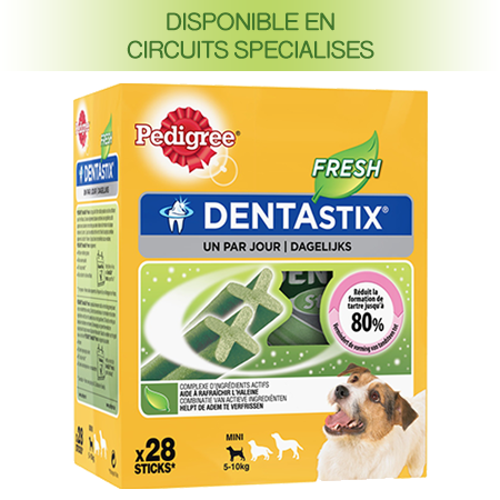 PEDIGREE® DENTASTIX™ FRESH multipack pour Petits Chiens 28 sticks