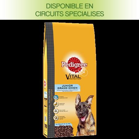 Croquettes Professional nutrition 15kg chien junior >25kg