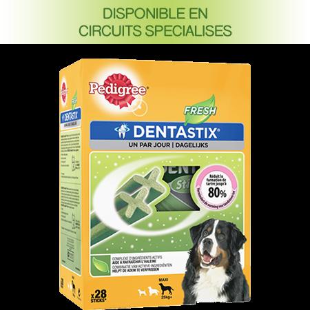 PEDIGREE® DENTASTIX™ FRESH multipack pour Grands Chiens 28 sticks