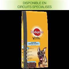 Pedigree PROFESSIONAL NUTRITION Croquettes Grand Chien Croissance optimale et développement des articulations pour chien junior 15Kg
