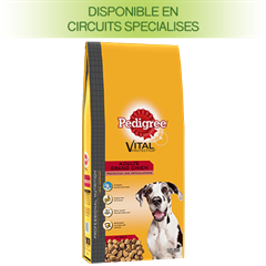 Pedigree PROFESSIONAL NUTRITION Croquettes Grand Chien Protection des articulations pour chien adulte 15 Kg