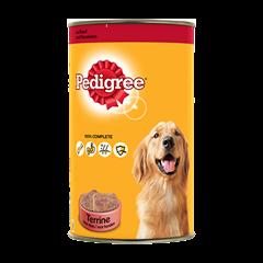 Boîtes Terrines™ 1x1,25kg pour chien adulte