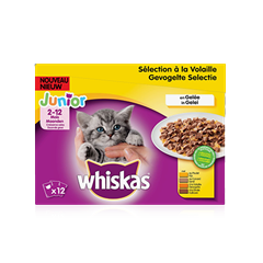 WHISKAS<sup>®</sup> Junior Volaille x12 en Gelée