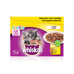 WHISKAS Junior Volaille x12 en Gelée