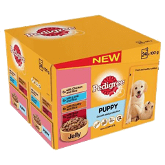 Pedigree Puppy Pouches Meat Selection in Jelly