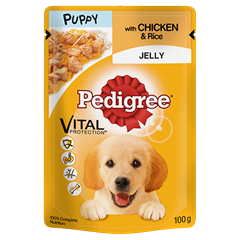 PEDIGREE® Puppy Pouch with Chicken and Rice in Jelly