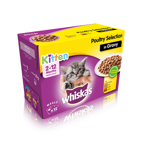WHISKAS Kitten Poultry Selection in Gravy - 12 x 100g
