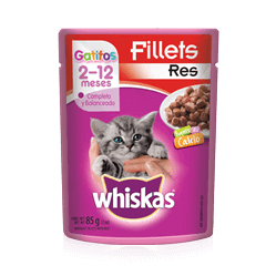 WHISKAS® Gatitos Carne de Res