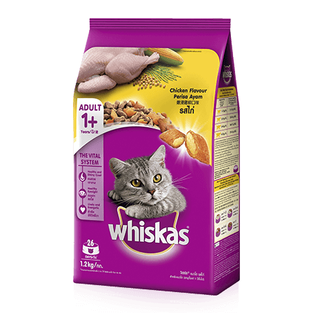 Chicken Dry Cat Food from Whiskas for Adult 1+ Cats
