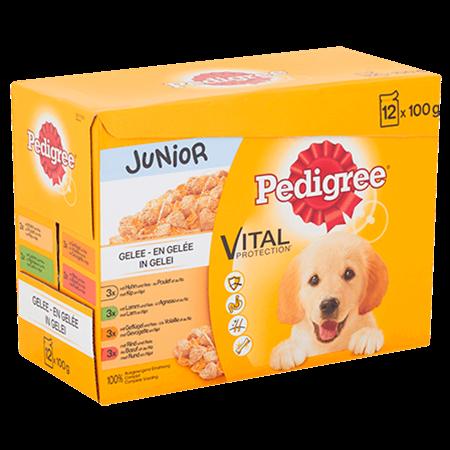 PEDIGREE® Vital Protection Junior in Gelei