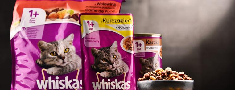 Dlaczego koty uwielbiają karmę Whiskas?