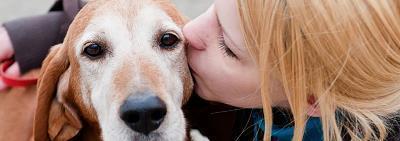 Правда ли, что у собаки должен быть один хозяин?