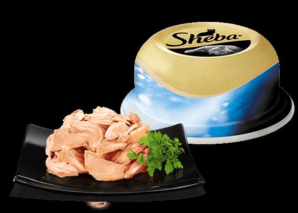 Сочный тунец в нежном соусе