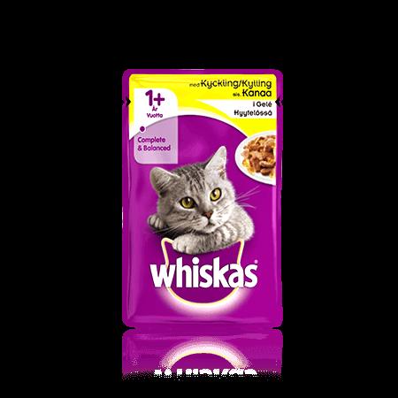 Whiskas® 1+ Kyckling i gelé Single