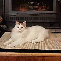 Turecká mačka Van