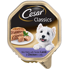 CESAR Classics Dog Tray with Lamb and Chicken in Jelly 150g