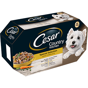 CESAR Country Kitchen Dog Trays Mini Fillets Selection in Gravy 4 x 150g