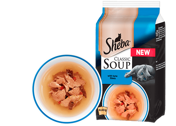 Classic Soup with Tuna Fillets Soup for cats