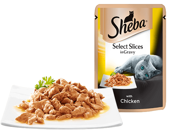 Select Slices with Chicken Cat food pouches