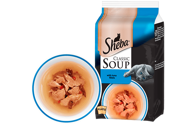 with Tuna Fillets Soup for cats