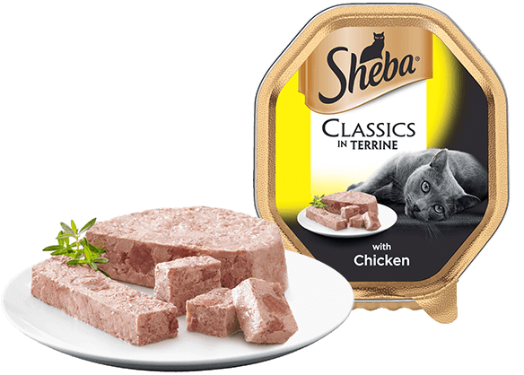 Classics in Terrine with Chicken