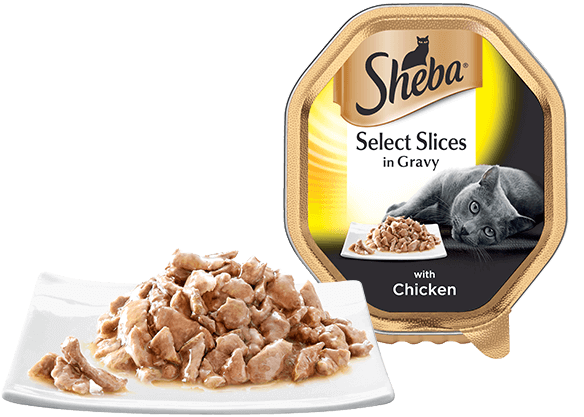 Select Slices with Chicken Slices in gravy for cats