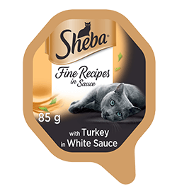 with Turkey in White Sauce
