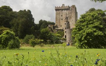 Cork, Blarney und Cashel Tagesausflug von Dublin