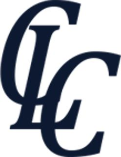 COO, C-Level Consulting