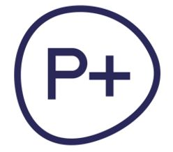 Senior Financial Manager - P+