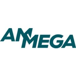 Finance Director for an international Business Unit – Ammega