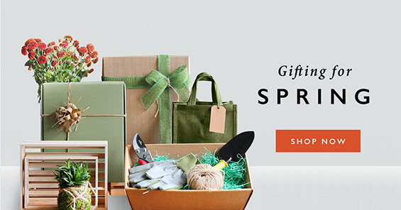 Gifting For Spring