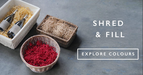 Shred & Fill | Explore Colours